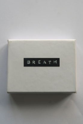 Breath (cover)